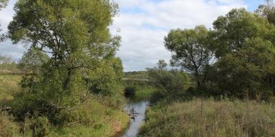Фотографии и отзывы о коттеджном поселке «Искона River Club» (Можайский р-н МО)