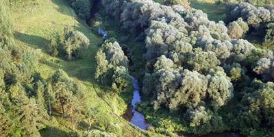Фотографии и отзывы о коттеджном поселке «Южный сад» (Раменский р-н МО)