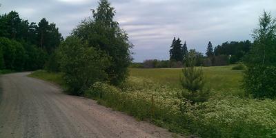 Фотографии и отзывы о коттеджном поселке «Озеро Утиное» (Выборгский р-н ЛО)
