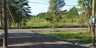 Фотографии и отзывы о коттеджном поселке «Ясная Поляна» (Всеволожский р-н ЛО)