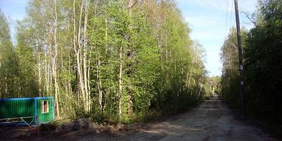 Фотографии и отзывы о коттеджном поселке «Черничный» (Всеволожский р-н ЛО)