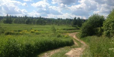 Фотографии и отзывы о коттеджном поселке «Звезда на Оредеже» (Гатчинский р-н ЛО)