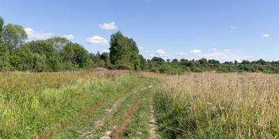 Фотографии и отзывы о коттеджном поселке «Луга-река» (Лужский р-н ЛО)