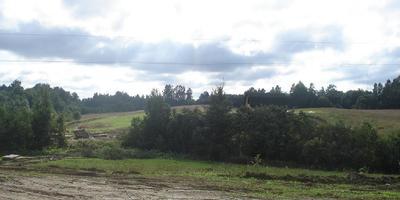 Фотографии и отзывы о коттеджном поселке «Доброе» (Кировский р-н ЛО)