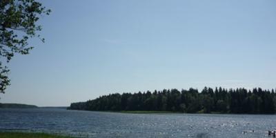 Фотографии и отзывы о коттеджном поселке «Былины» (Лужский р-н ЛО)