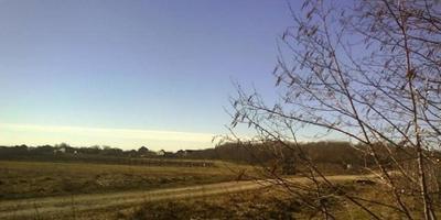 Фотографии и отзывы о коттеджном поселке «Подсолнухи 2» (Ломоносовский р-н ЛО)