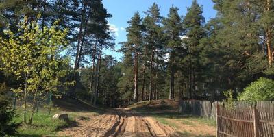 Фотографии и отзывы о коттеджном поселке «Большие Крупели» (Лужский р-н ЛО)