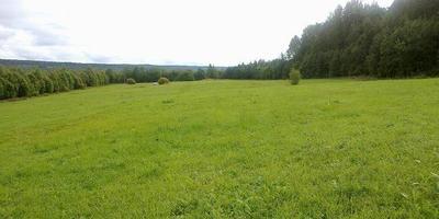 Фотографии и отзывы о коттеджном поселке «Подгорная Усадьба» (Выборгский р-н ЛО)