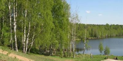 Фотографии и отзывы о коттеджном поселке «Красная Горка 2» (Всеволожский р-н ЛО)