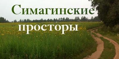 Фотографии и отзывы о коттеджном поселке «Симагинские Просторы» (Выборгский р-н ЛО)