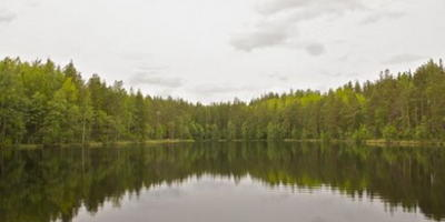 Фотографии и отзывы о коттеджном поселке «Ольховый» (Выборгский р-н ЛО)
