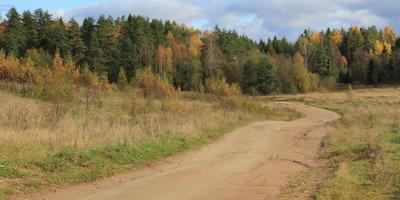 Фотографии и отзывы о коттеджном поселке «Усадьба Воронцово» (Выборгский р-н ЛО)