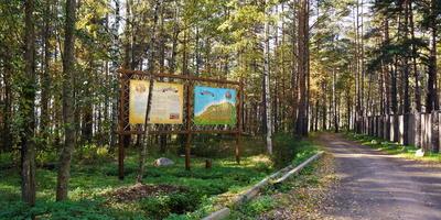 Фотографии и отзывы о коттеджном поселке «Ораваниеми» (Приозерский р-н ЛО)