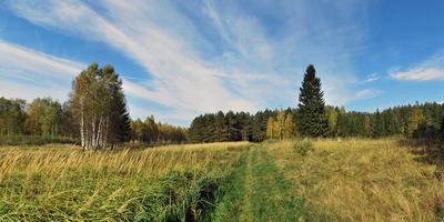 Фотографии и отзывы о коттеджном поселке «Иволга» (Ломоносовский р-н ЛО)