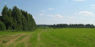 Фотографии и отзывы о коттеджном поселке «Терра-Порошкино» (Всеволожский р-н ЛО)