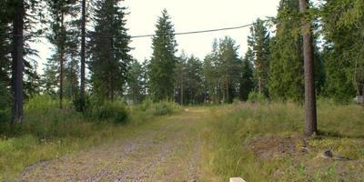 Фотографии и отзывы о коттеджном поселке «Хвойный» (Выборгский р-н ЛО)