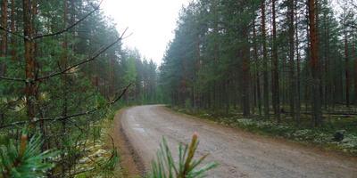 Фотографии и отзывы о коттеджном поселке «Красноозерное» (Приозерский р-н ЛО)