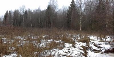 Фотографии и отзывы о коттеджном поселке «Вайя-2» (Гатчинский р-н ЛО)