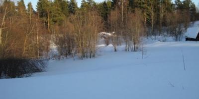 Фотографии и отзывы о коттеджном поселке «Линдуловская роща» (Выборгский р-н ЛО)