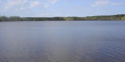 Фотографии и отзывы о коттеджном поселке «Ольшаники» (Выборгский р-н ЛО)