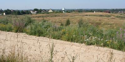 Фотографии и отзывы о коттеджном поселке «Тавры» (Всеволожский р-н ЛО)