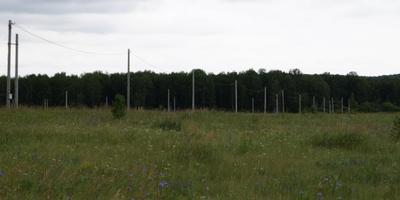 Фотографии и отзывы о коттеджном поселке «Константиновские пруды» (Ломоносовский р-н ЛО)