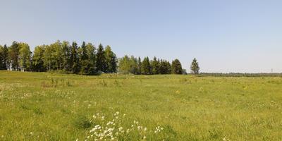 Фотографии и отзывы о коттеджном поселке «Луговое» (Ломоносовский р-н ЛО)