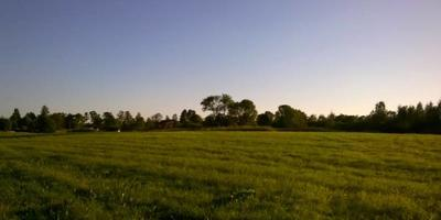Фотографии и отзывы о коттеджном поселке «Красносельская Усадьба» (Ломоносовский р-н ЛО)
