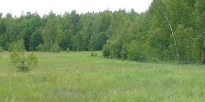Фотографии и отзывы о коттеджном поселке «Зеленый квартал» (Раменский р-н МО)