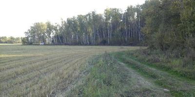 Фотографии и отзывы о коттеджном поселке «Солнечная долина» (Воскресенский р-н МО)