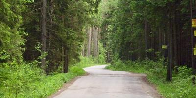 Фотографии и отзывы о коттеджном поселке «Елизарово-Park» (Наро-Фоминский р-н МО)