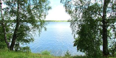 Фотографии и отзывы о коттеджном поселке «Volna» (Можайский р-н МО)