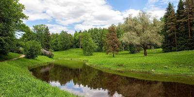 Фотографии и отзывы о коттеджном поселке «Дольское» (Приозерский р-н ЛО)