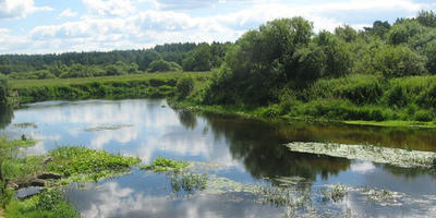 Фотографии и отзывы о коттеджном поселке «Юрки» (Кингисеппский р-н ЛО)