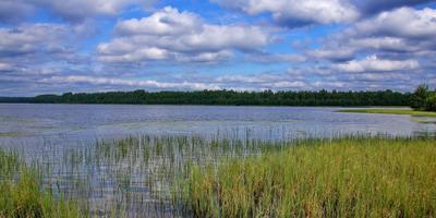 Фотографии и отзывы о коттеджном поселке «Нахимовское озеро» (Выборгский р-н ЛО)