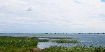 Фотографии и отзывы о коттеджном поселке «Большой Сунгуль» (Каменский р-н Свердловской области)
