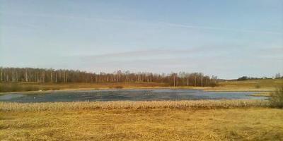 Фотографии и отзывы о коттеджном поселке «Новые корелы» (Александровский р-н Владимирской области)