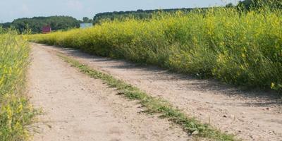 Фотографии и отзывы о коттеджном поселке «Покровское-Южное» (Заокский р-н Тульской области)