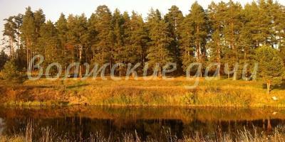 Фотографии и отзывы о коттеджном поселке «Устье» (Калязинский р-н Тверской области)