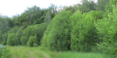 Фотографии и отзывы о коттеджном поселке «У семи прудов» (Заокский р-н Тульской области)