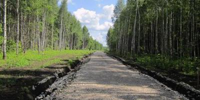 Фотографии и отзывы о коттеджном поселке «Пряники-2» (Ясногорский р-н Тульской области)