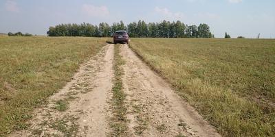Фотографии и отзывы о коттеджном поселке «Скворцово» (Ленинский р-н Тульской области)