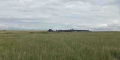 Фотографии и отзывы о коттеджном поселке «Предместье Райнвальд» (Белоярский р-н Свердловской области)