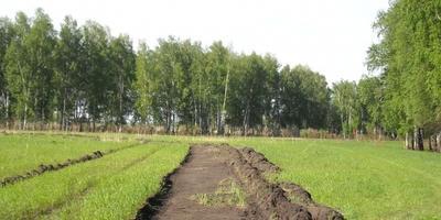 Фотографии и отзывы о коттеджном поселке «Солнечная долина» (Новосибирский р-н Новосибирской области)