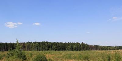 Фотографии и отзывы о коттеджном поселке «Радищево» (Малоярославецкий р-н Калужской области)