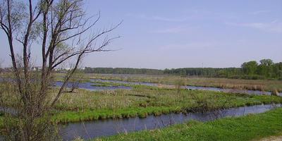 Фотографии и отзывы о коттеджном поселке «Южное озеро» (Волжский р-н Самарской области)