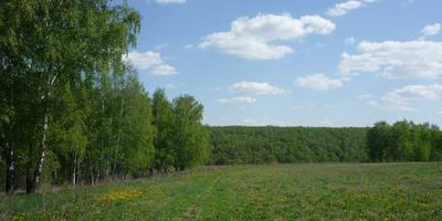 Фотографии и отзывы о коттеджном поселке «Альтернатива» (Белоярский р-н Свердловской области)