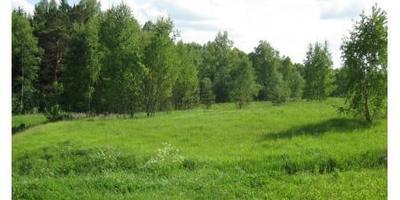 Фотографии и отзывы о коттеджном поселке «Экодолье Калуга» (Перемышльский р-н Калужской области)