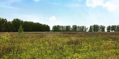 Фотографии и отзывы о коттеджном поселке «Сокуры» (Лаишевский р-н Татарстана)