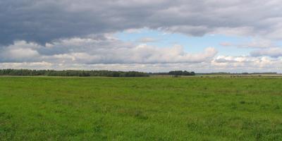 Фотографии и отзывы о коттеджном поселке «Графский луг» (Белоярский р-н Свердловской области)